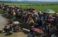 مأساة الروهينغا مستمرة .. صور