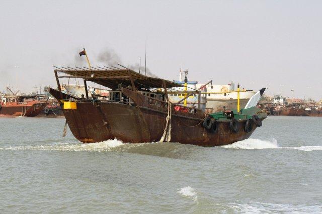 أسماك الصبور المهاجرة تدخل المياه العراقية وسط اقبال كبير على صيدها