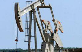 النفط تكشف خططها الاستكشافية المستقبلية