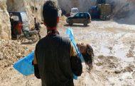 «عاصفة الكيماوي» السوري تسقِط مشروع بوتين؟