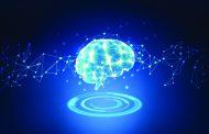 العلماء نحو تطوير أدمغة بشرية في المختبر