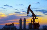 أسعار النفط تواصل انخفاضها مع وفرة المعروض